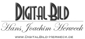 Digitalbild-logo-mit-web